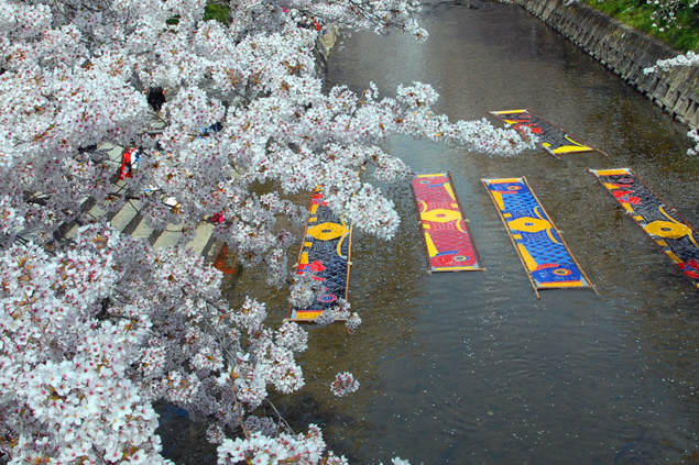 &nbspPlaces in Aichi to enjoy the beauty of cherry blossoms