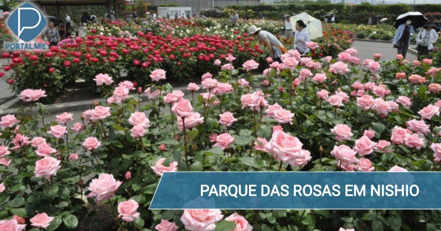 &nbspMore than 3 thousand roses in the park in Aichi
