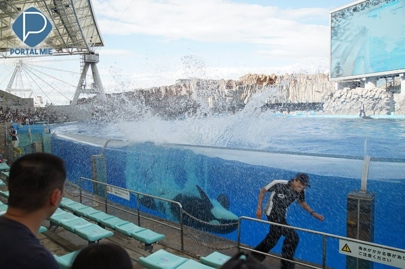 &nbspNagoya Aquarium: one of the largest and best in Japan