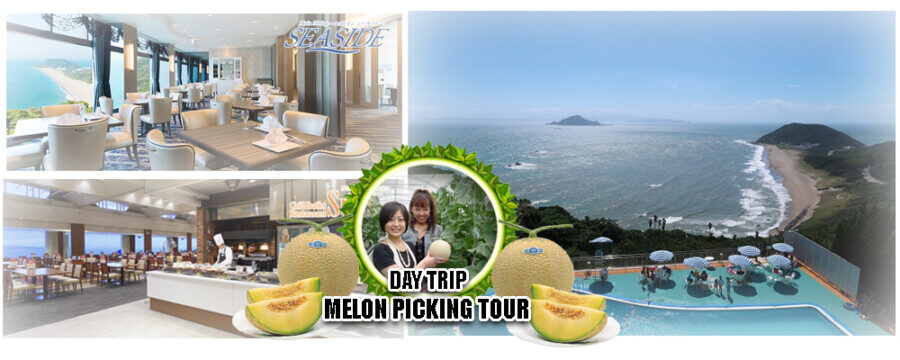 &nbspDay trip bus tour / Departure and Arrival from Nagoya・Mikawa /Atsumi Hanto Melon Picking Day Trip