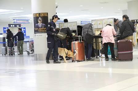 &nbspDalawang Pinay sa Gifu huli sa drug smuggling