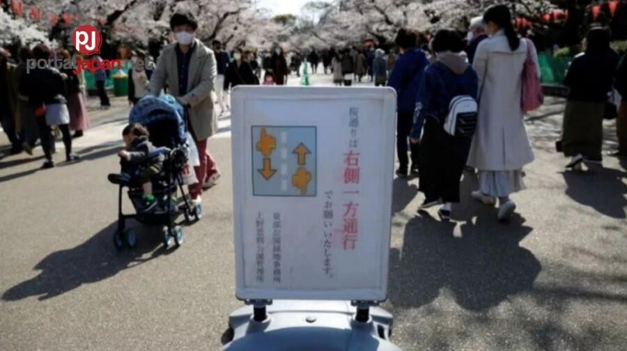 &nbspTag-sibol na sa Japan, pero dahil sa pandemiya limitado ang pag-titipon tipon ng mga tao